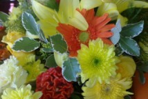 Special Occasions delivery - Order from your Interflora florist in Cape Town South Africa to send and deliver flowers.